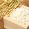 お米はどこで保存していますか?無印で手に入れたい冷蔵庫用米びつのご紹介
