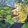 関西で安産祈願に行きたい!人気の中山寺など京都や大阪のおすすめ寺社15選