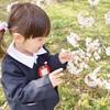 口コミでおすすめ!江東区の幼稚園15選!