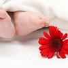 不妊治療に国内初の保険!日本生命保険から発表されました