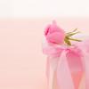 夫婦の記念日に行きたい東京都内の贅沢レストラン10選
