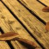 秋から冬にかけて注意!!季節性うつ病の症状と対策?