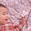 いつものお花見より100倍楽しむ! 周りより差がつくお花見便利グッズ14選♡