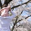 親子でおでかけ!関西でやる4月限定の楽しいイベント4つを大・大・大特集~~♪