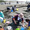 夏の時期は貝毒が増える?危険性のある貝の種類5つ