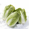お鍋で使い切れなかった白菜どう使う?白菜の簡単レシピアイデア15