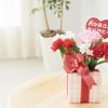 母の日のしゅうとめへの贈り物は何がよい?嫁しゅうとめ間のギフト実態調査