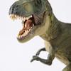 子供向けの恐竜図鑑と大人も一緒に楽しめる商品ご紹介