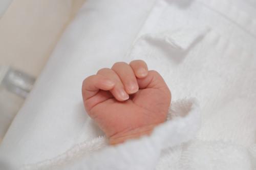 出生届の書き方や注意点 出産届...