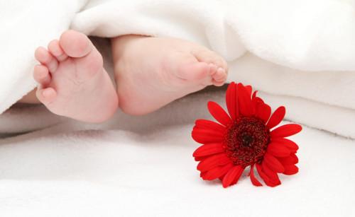 赤ちゃん 女の子 花
