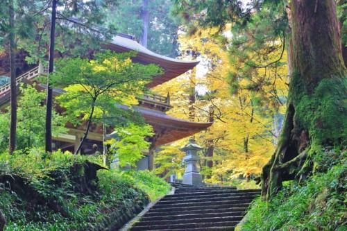 神社 階段