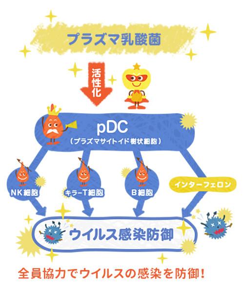 プラズマ乳酸菌の仕組み・メカニズムの紹介