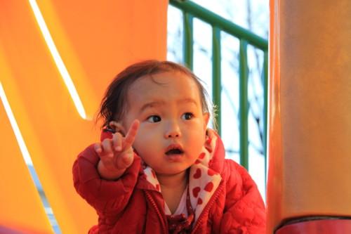 乳児 指さし 日本人