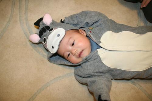 男の子 赤ちゃん