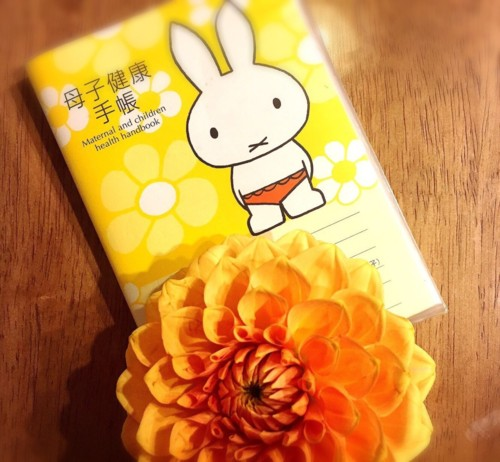 世田谷区母子手帳