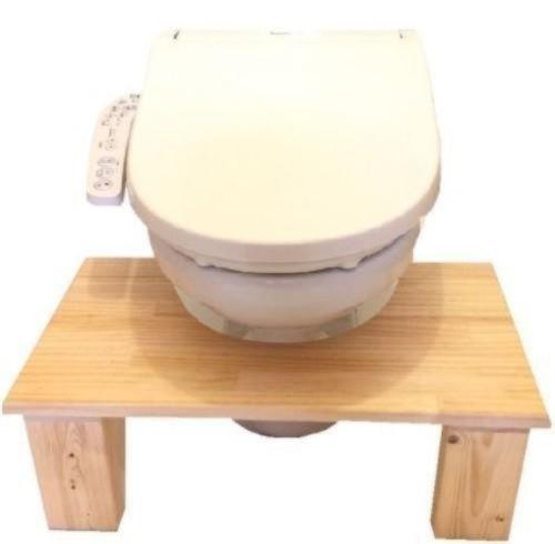 トイレ トレーニング 練習 踏み台 ステップ (ワイドタイプ)
