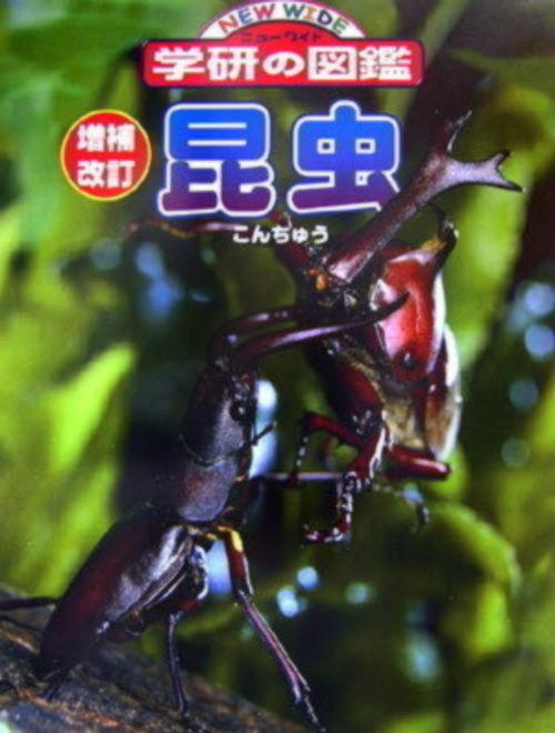 昆虫 (ニューワイド学研の図鑑1)