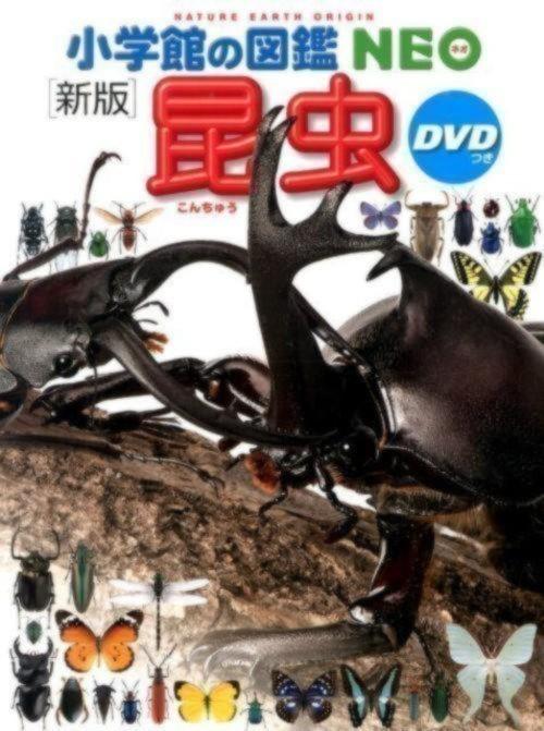 小学館の図鑑NEO昆虫 DVDつき