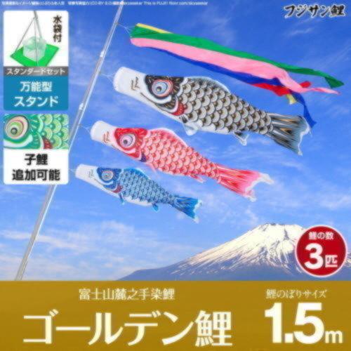 ゴールデン鯉1.5m