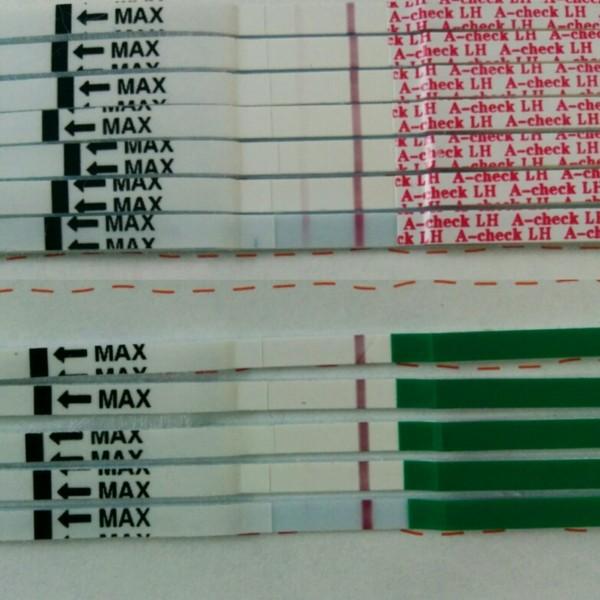 高温期12日目の二人目妊活中です。米国の妊娠検査薬A… [ママリ ...